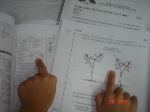 pmr-kenatepat-2009-1