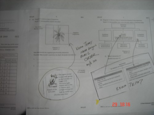 pmr-kenatepat-2009-10