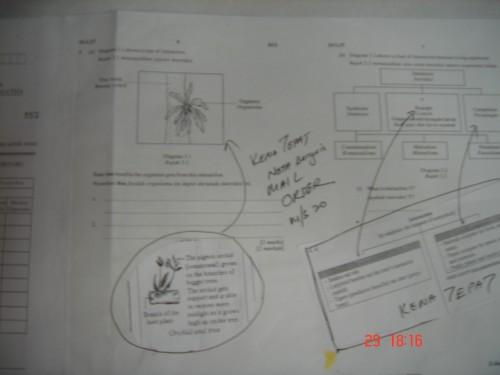 pmr-kenatepat-2009-11