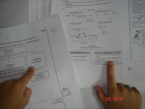 pmr-kenatepat-2009-6